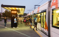 Night special services in July and August